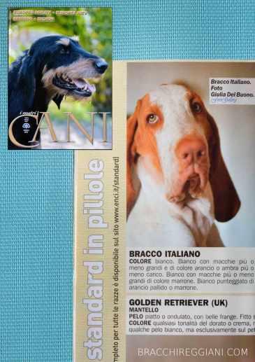rivista enci i nostri cani giulia del buono