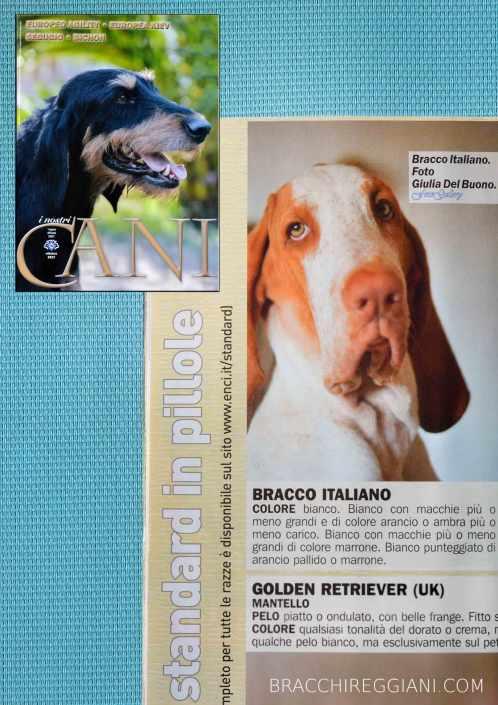 Isadora @ I nostri Cani - Ottobre 2017