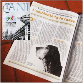 Ulisse @ I nostri cani - Giugno 2015
