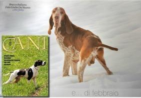 Ulisse @ I nostri cani - Febbraio 2016