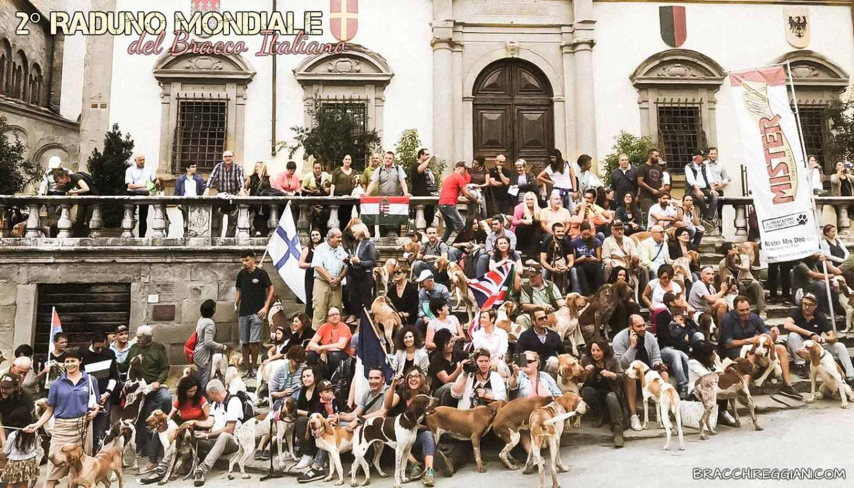 bracco italiano di cascina croce dei sanchi polcevera di montericco esposizione raduno cani
