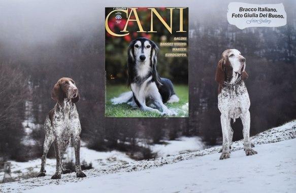 Ulisse & Olena @ I nostri cani - Febbraio 2018