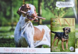 Isadora @ I Nostri Cani - Giugno 2018
