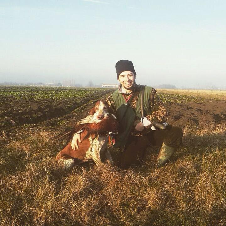 caccia cane bracco