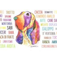 Il piccolo glossario del Bracco Italiano