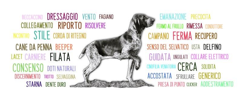 cane da caccia cane da ferma cane da riporto