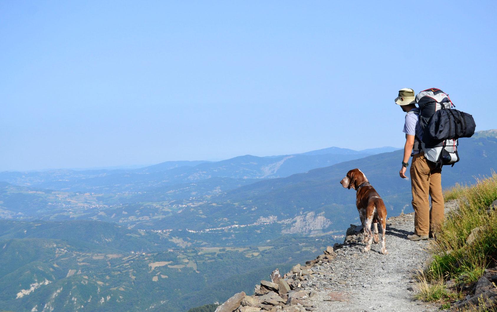 montagna-col-cane